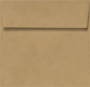 3 1/4 x 3 1/4 Square Envelopes 70# Grocery Bag