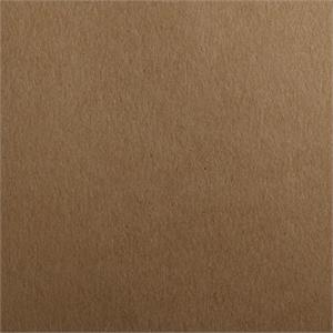 Grocer Kraft Neenah Environment  Cardstock Comes in 2 Sizes 100# Cover Raw Digital Finish