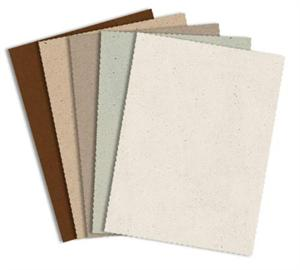 French Paper - SPECKLETONE 8.5X11 Card Stock Paper 80#